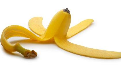 bananova kora