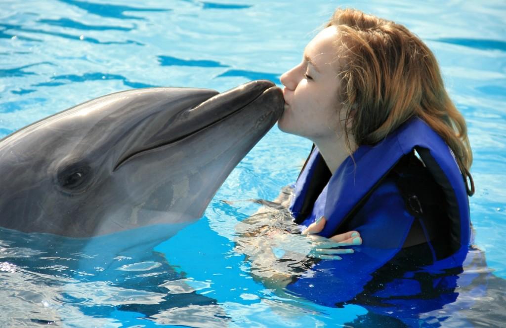 плуване с делфини