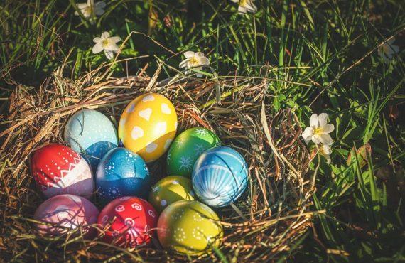 кошница за яйца
