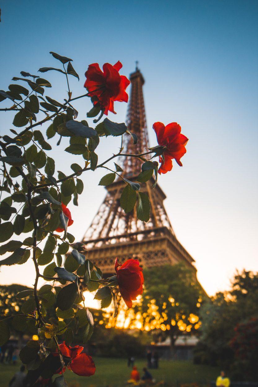 айфелова-кула