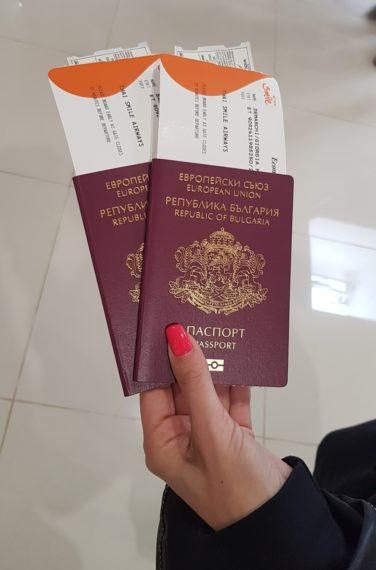 международен паспорт