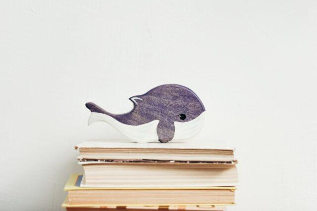 любопитни факти за китовите акули