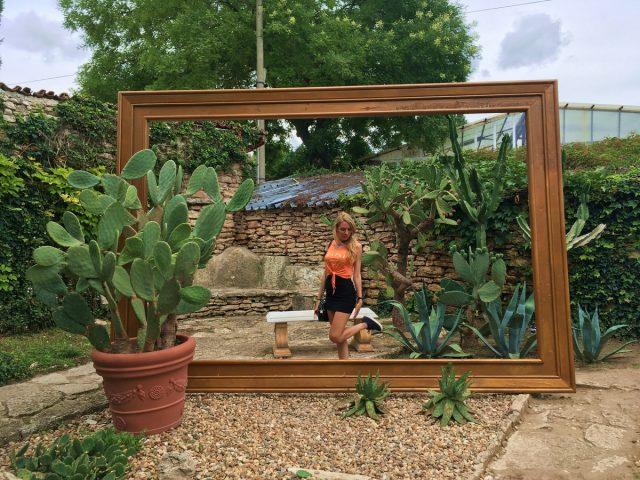кактусова колекция в Ботаническата в Балчик