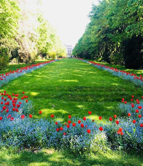 паркове в Букурещ