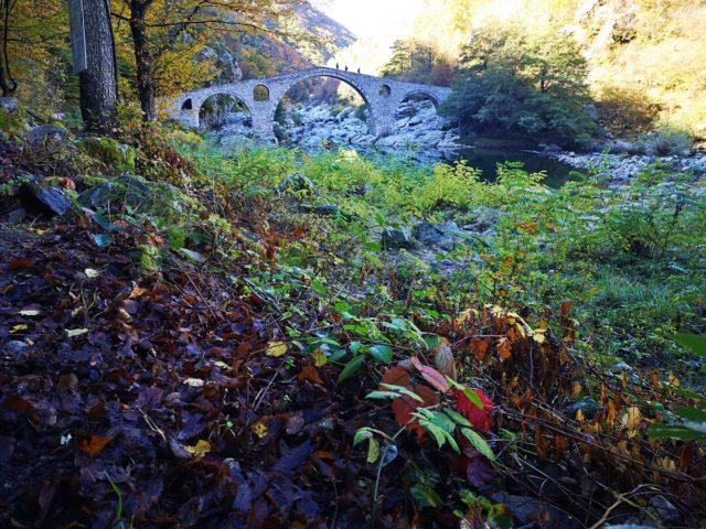 есен около Дяволския мост