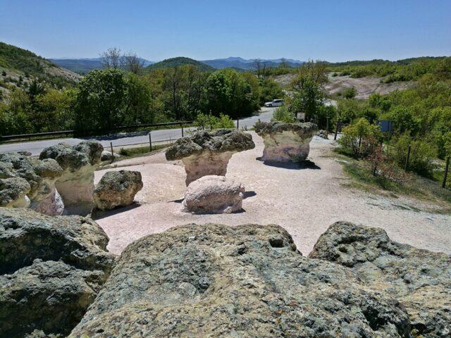 гледка към пътя край Каменните гъби
