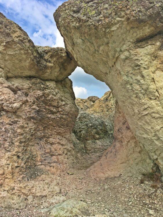 Каменни гъби образуване