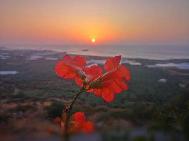 залез на остров Крит