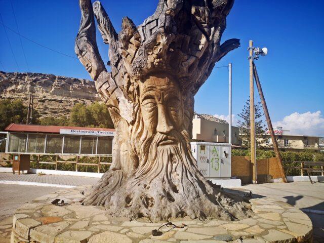 дърво Матала